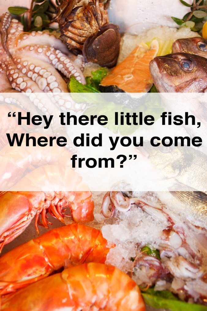 Demystifying the fishy story behind seafood defiantly for What does sustainable fish mean
